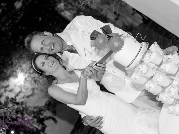 web-bride,-groom-&-cake