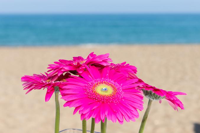 beach-wedding-in-Spain