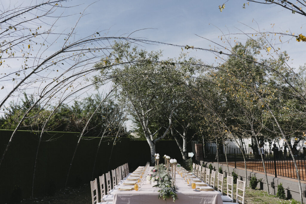 Natural arboreal archways make for a glorious setting for a wedding breakfast