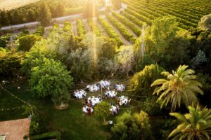 Aerial shot of the wedding party - Talia Giraudo, Thoroughly Gorgeous