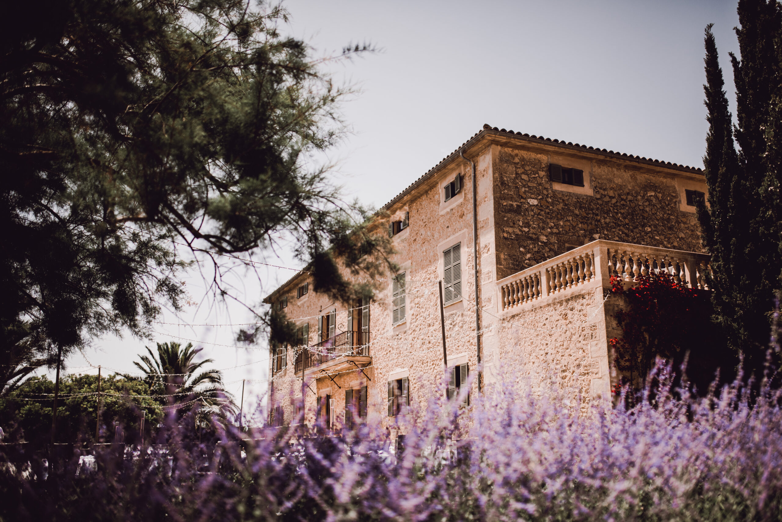 The pretty Finca and its gardens - Rebecca Jackson Photography