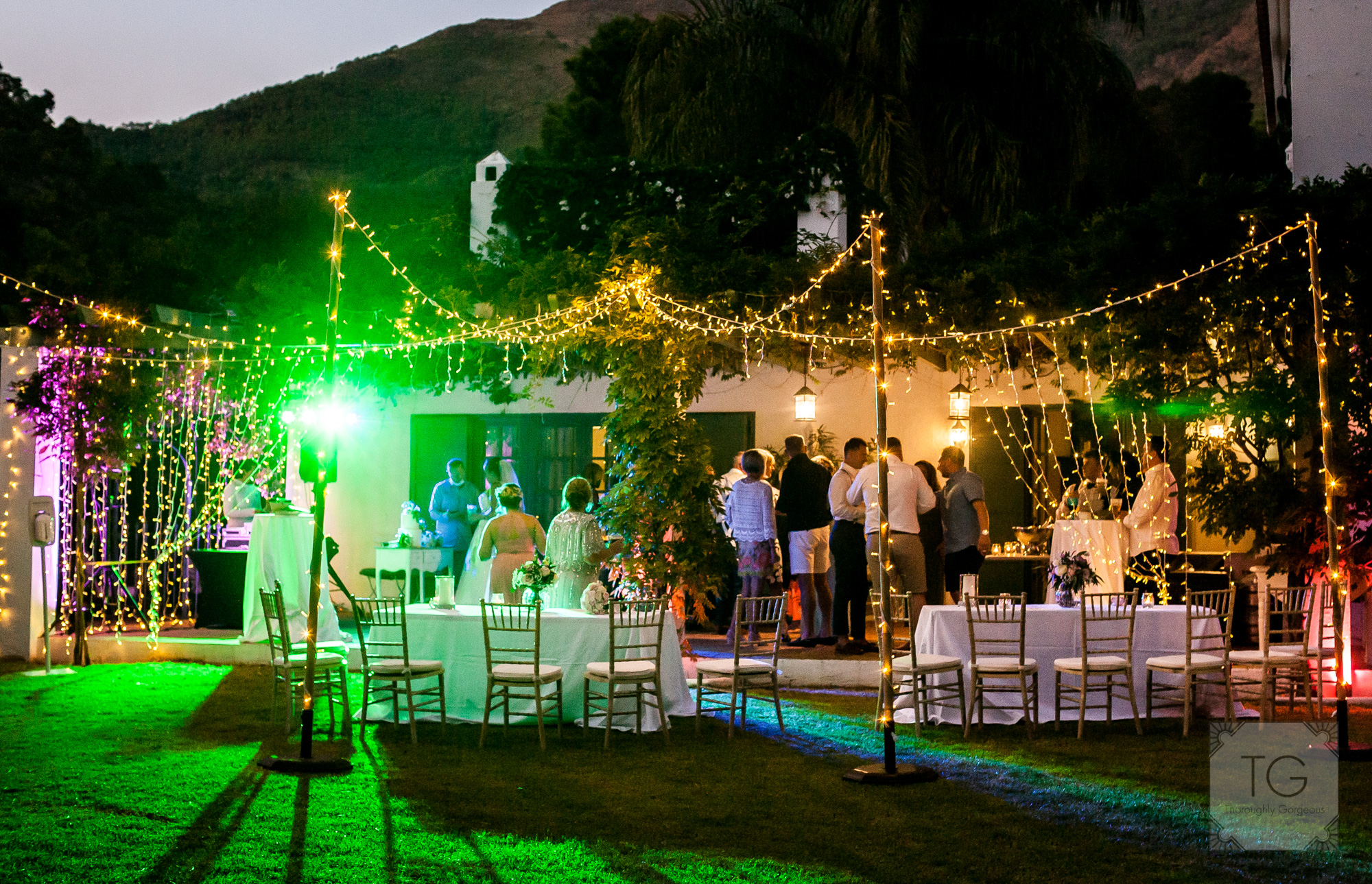 Wedding guests in the evening